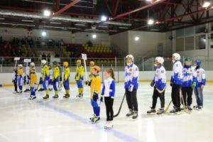 В Сыктывкаре стартовал турнир по мини-хоккею с мячом