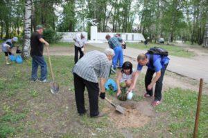 Сыктывкарцы высадили аллею из молодых дубов в память о погибших в годы Великой Отечественной войны