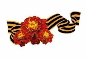 Волонтеры и общественники подарят жителям столицы Коми цветы Победы